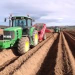 planting-rlsmith3 (Small)